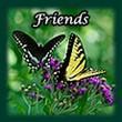 friends link menu